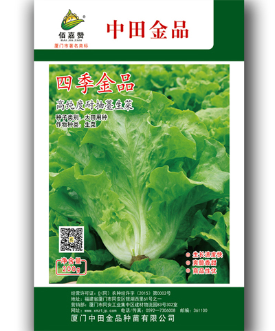 四季金品高纯度耐抽薹生菜 200克/包