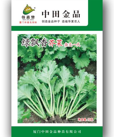 绿飘香芥菜 10克/包