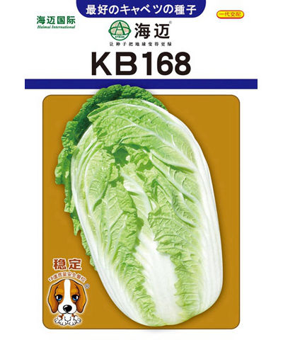 KB168