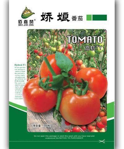 娇娘番茄 1000粒/包
