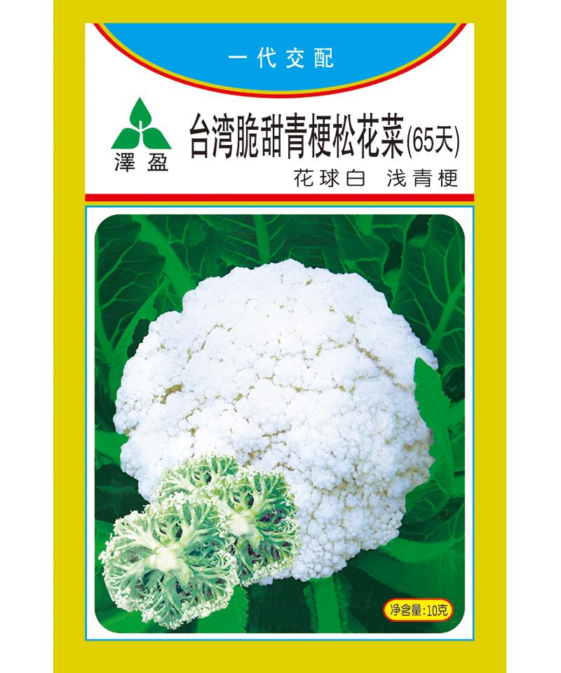 台湾脆甜青梗松花菜(65天)