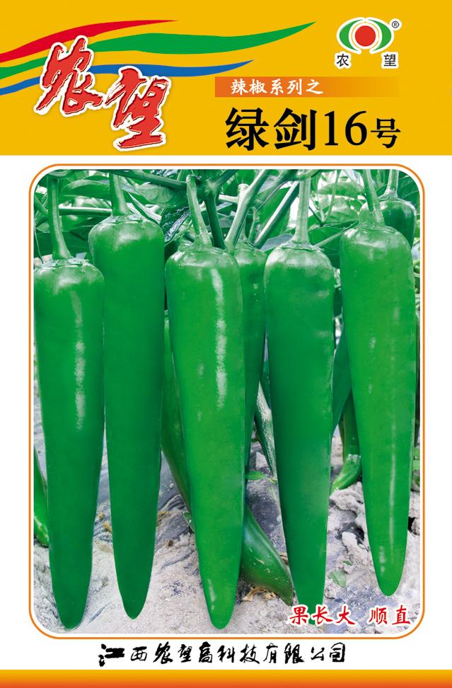 绿剑16号