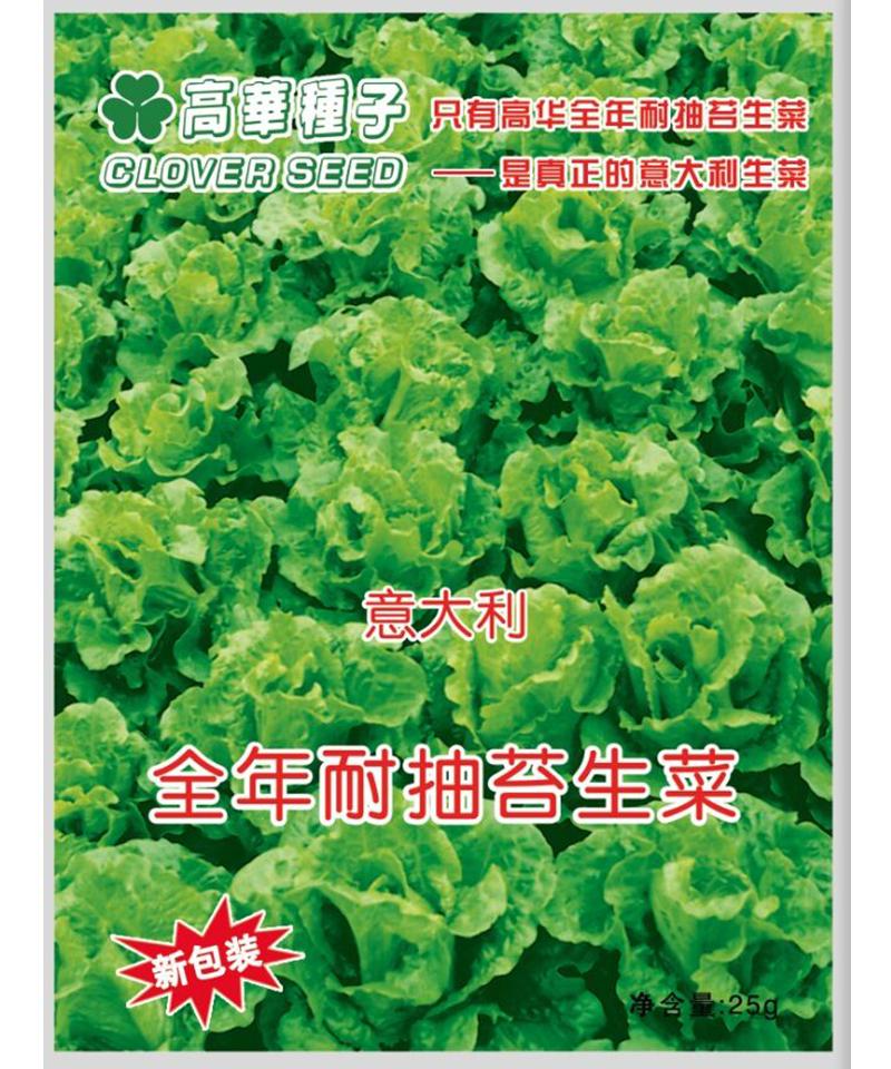 高华新版意大利全年耐抽苔生菜25g