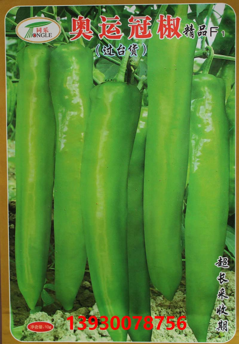 高产尖椒——奥运冠椒