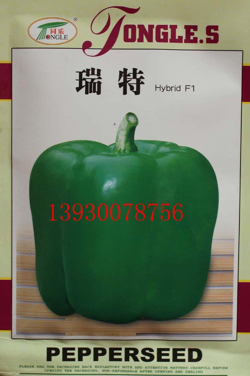 大果型甜椒——瑞特