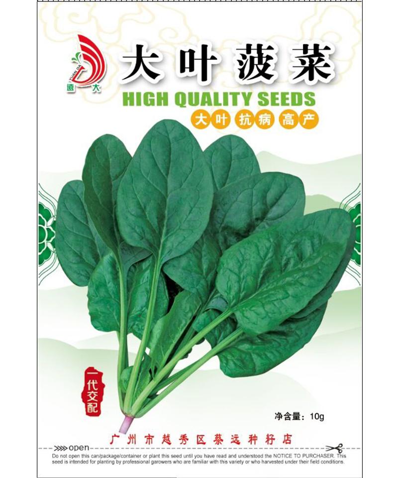 大叶菠菜10g