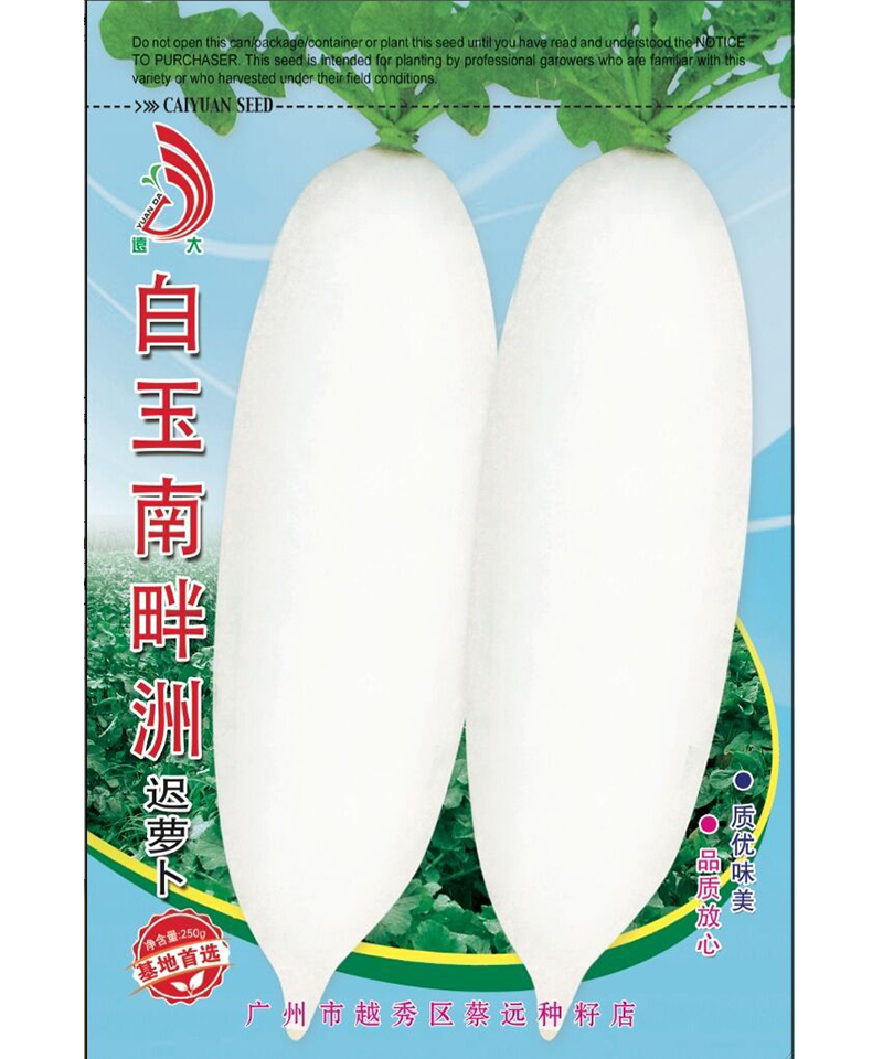 白玉南畔洲迟萝卜250g