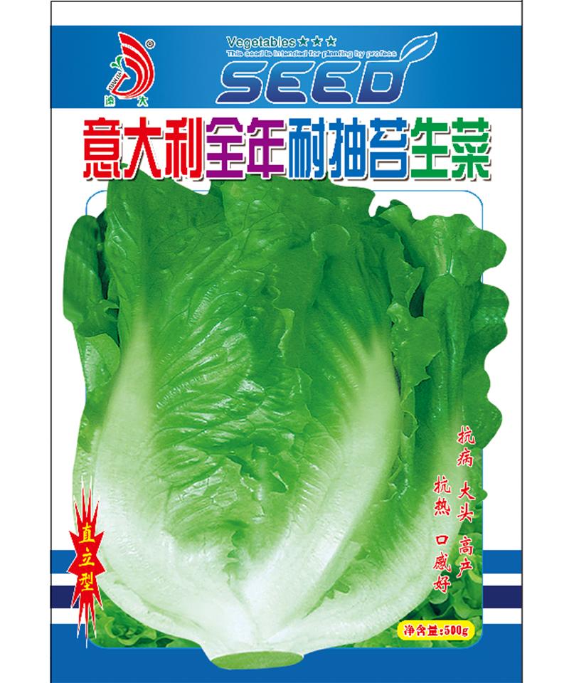 意大利全年耐抽薹生菜500g