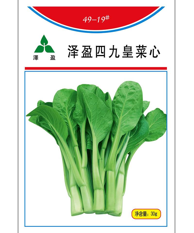 泽盈四九皇菜心30g