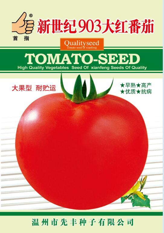 新世纪903大红番茄