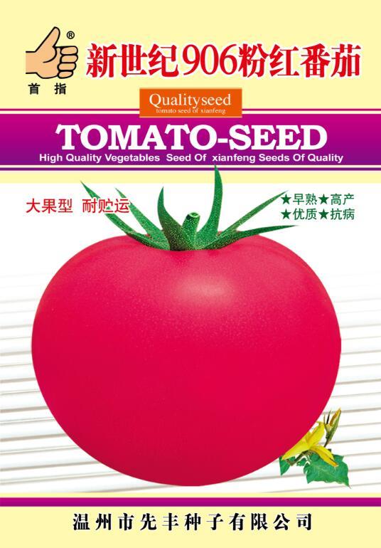 新世纪906粉红番茄