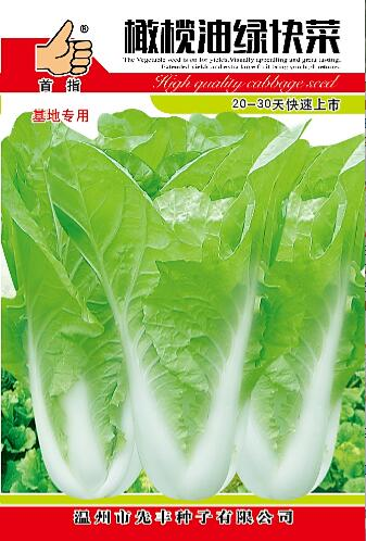 橄榄油绿快菜  16g