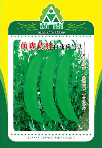 萌森优胜白花荷兰豆
