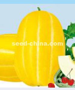 金玉-甜瓜