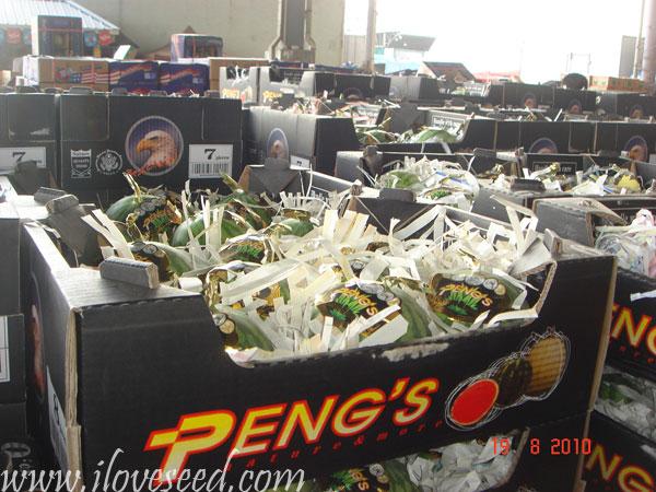 西瓜花金广州江南市场销售情形