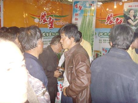 杨凌会品种展示场面